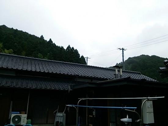 DSC_1238
