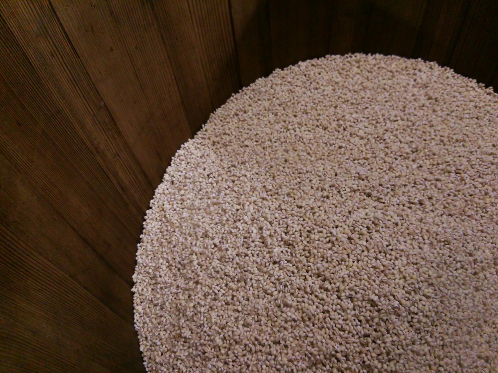 珍しく麦麹を販売できます。