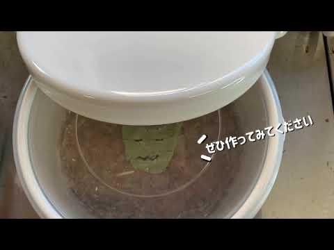 手作り味噌キット 仕上がり5キロの仕込み方動画